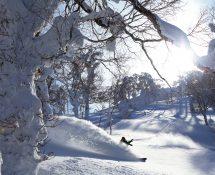 【ウェスティン ルスツリゾート】 スキーイメージ